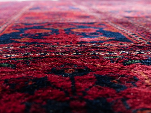 How to Remove a Stain from a Wool Carpet